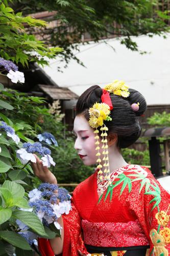 maiko-003